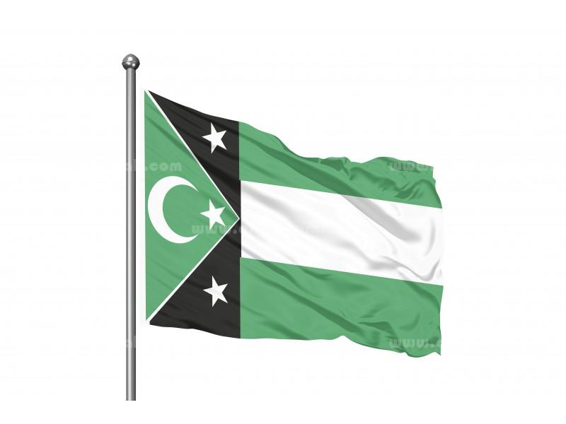 Batı Trakya Bayrağı