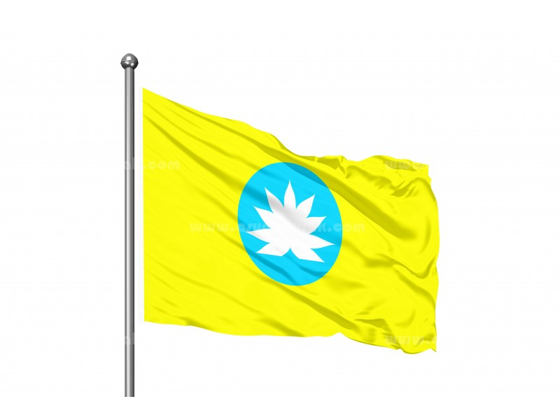 Kalmuk Cumhuriyeti Bayrağı