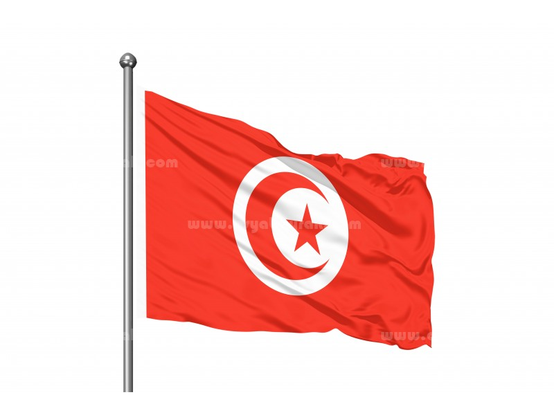 Tunus Bayrağı