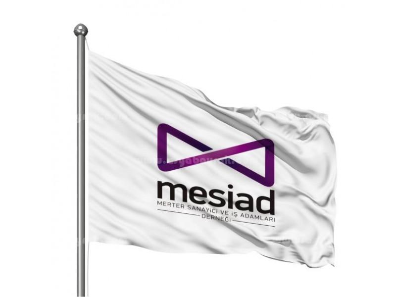 Mesiad Logo