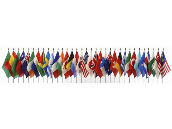 Devlet Masa Bayrakları