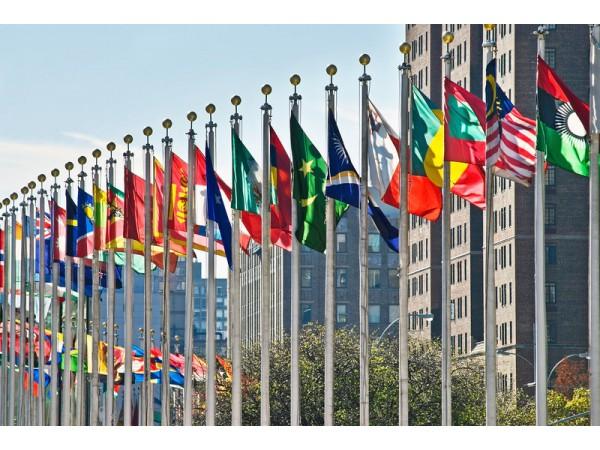Devlet Bayrakları